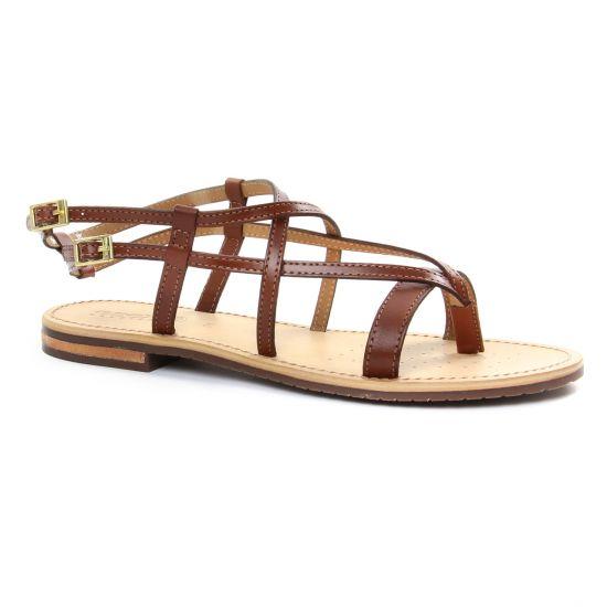 Nu Pieds Et Sandales Geox D822Cc Brown, vue principale de la chaussure femme